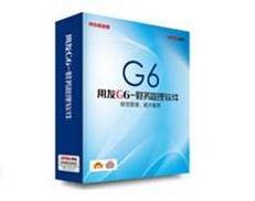 G6财务管理系统