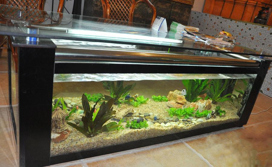 鱼缸边框安装步骤图片