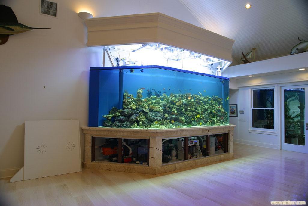生态鱼缸定做