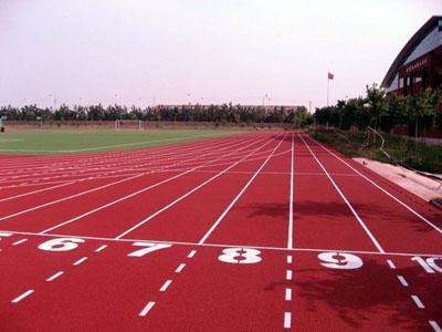 【廠家直銷】蘭州品質好的商用卷材|青海塑膠跑道