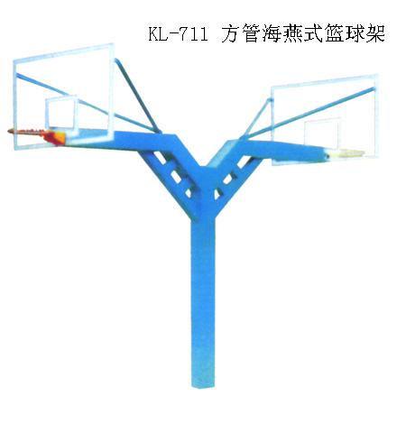 籃球架 海燕式籃球架