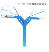 篮球架订做:可信赖的海燕式篮球架公司