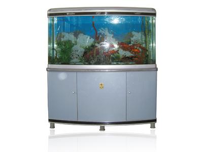 生态鱼缸-水族箱