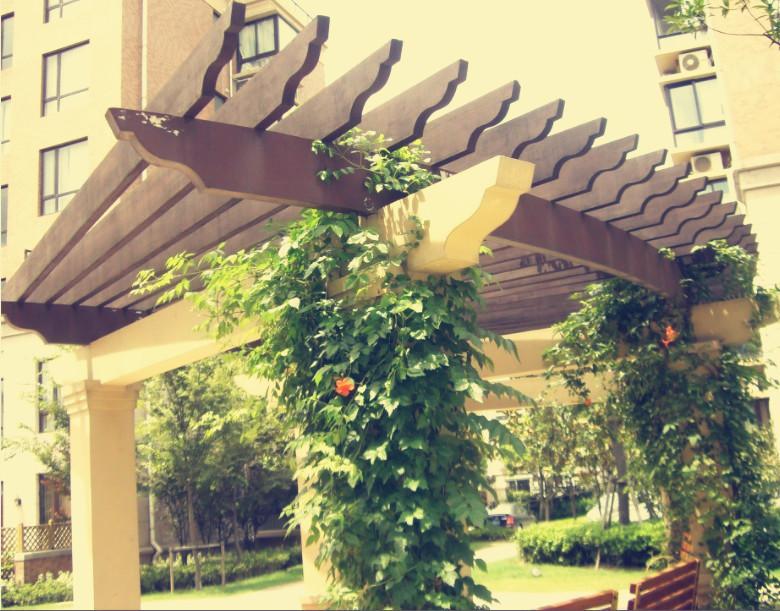 福建防腐木葡萄架|庭院花架|休闲长廊|藤架|公共场所凉亭架
