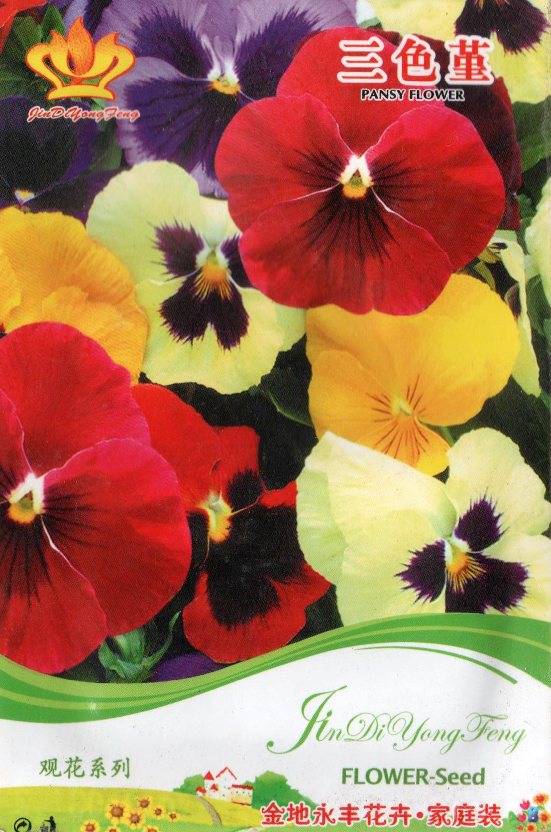 河北郑州花种批发-想买新品花种,就到鸿杰园林资材经营部