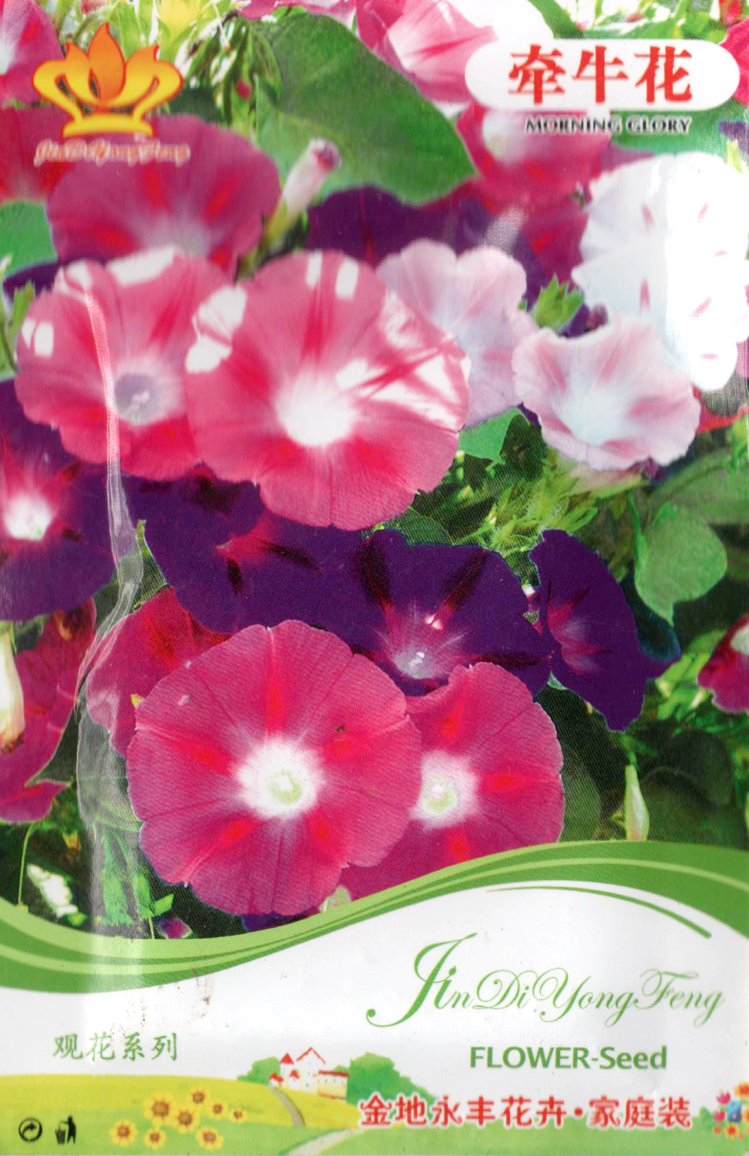 河南花种批发 一串红、万寿菊、牵牛花花种批发