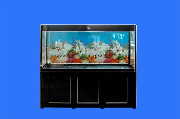 生态鱼缸设备_水族箱生产厂家