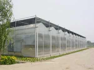 青州大棚建设- 智能连栋温室建造