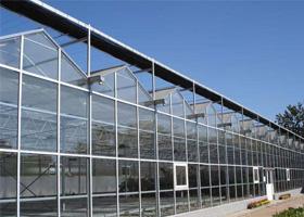 北方温室大棚设计|高质量的北方温室大棚建造推荐