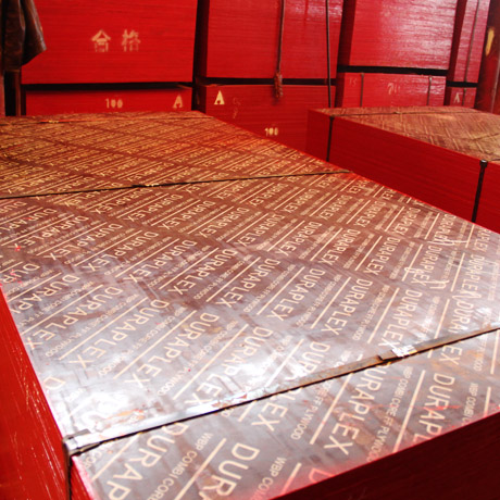 声誉好的竹胶板供应商当属奇亿工贸——金昌方木