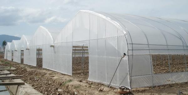 专业的薄膜温室建造