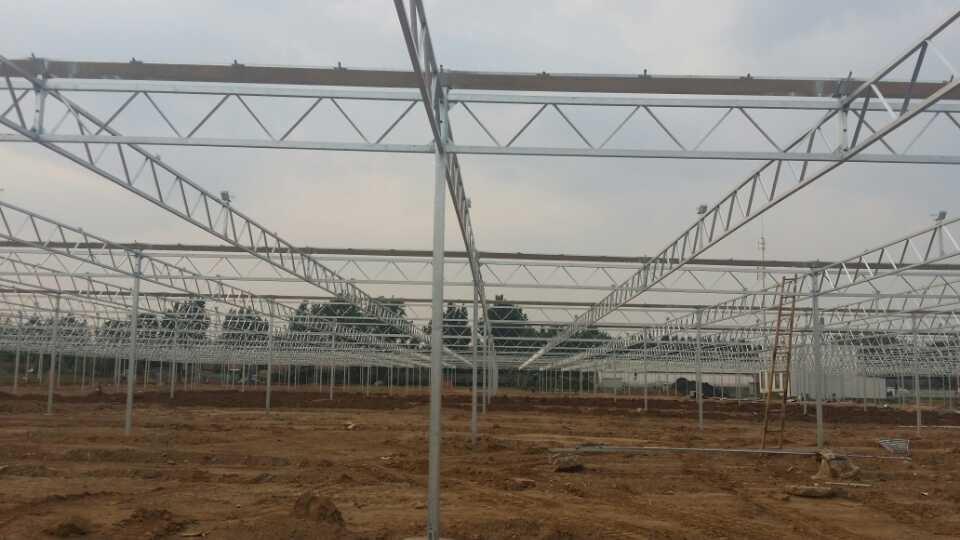 连栋温室大棚专业设计建造|连栋薄膜温室大棚建设
