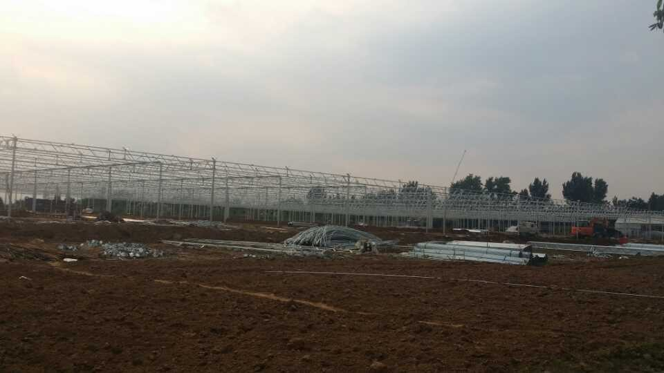 连栋温室大棚专业建设厂家-高温连栋温室大棚建造
