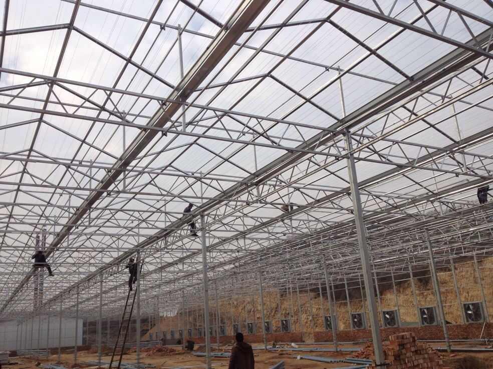 详细说明 北方温室大棚建造 青州市洺瑜花卉苗木家庭农场承接北方温室大棚建造工程,我们采用当下的温室工程建造技术,我们打造的温室大棚能透光、保温(或加温),用来栽培植物的设施。在不适宜植物生长的季节,能提供生育期和增加产量,多用于低温季节喜温蔬菜、花卉、林木等植物栽培或育苗等。 欢迎致电咨询或者来洺瑜参观考察,我们将以优质的服务回馈新老客户。