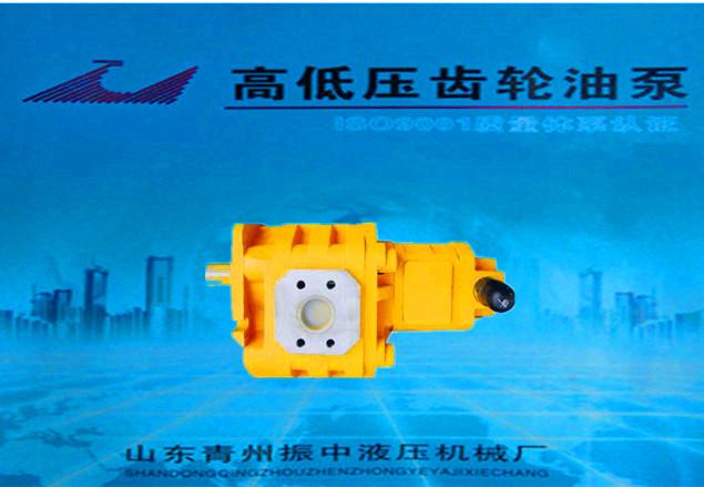 JHP齒輪油泵-具有口碑的CBGJ2高壓雙聯泵供應商_振中液壓機械