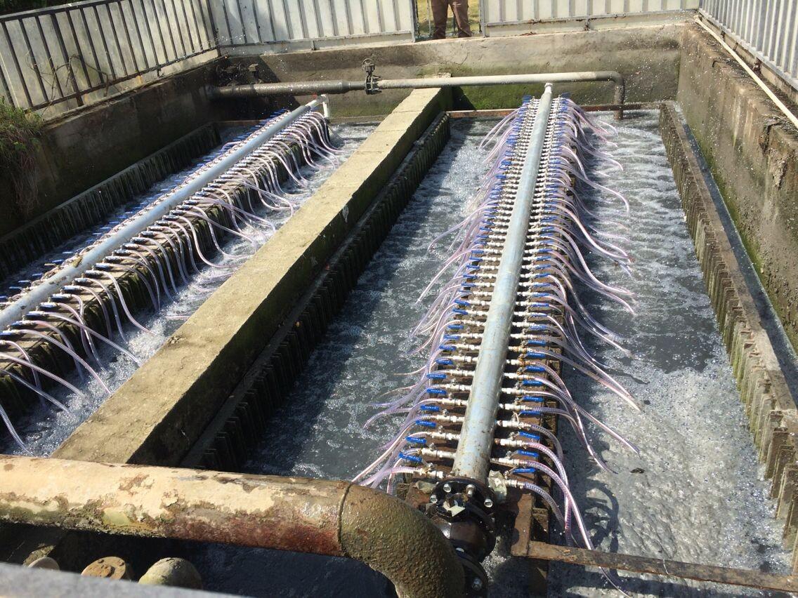 污水净化设备厂家-实惠的污水净化设备供销