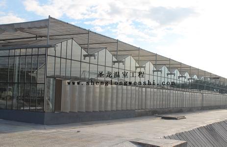 连栋温室大棚造价-连栋温室专业建设厂家