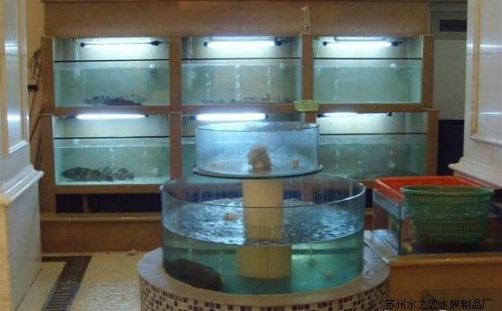 江苏新款海鲜鱼缸供应 上海亚克力鱼缸厂家