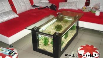 生態魚缸茶幾-哪兒能買到好的茶幾魚缸