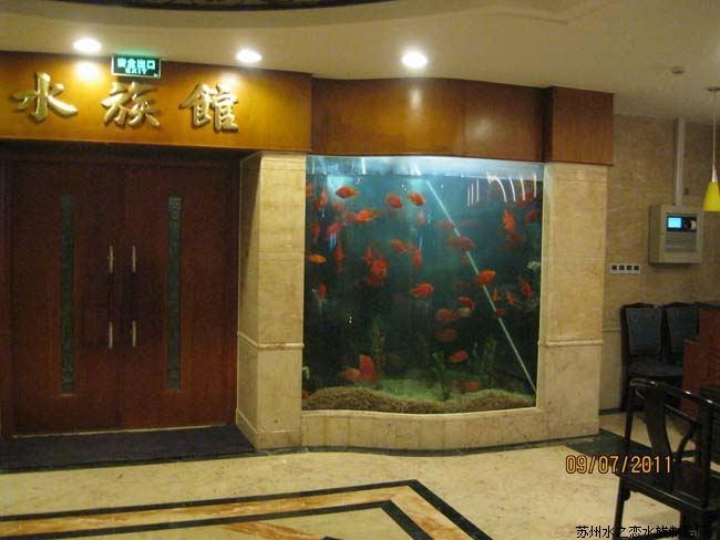【荐】苏州质量过硬的观赏鱼缸|观赏鱼缸订制