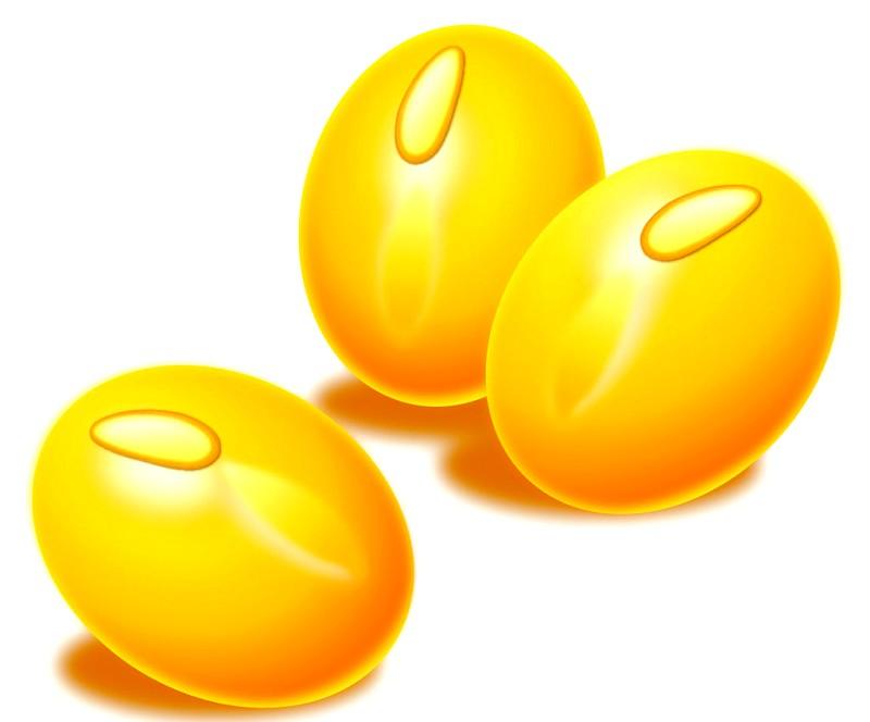 许昌口碑好的大豆油哪里买:大豆油价格范围