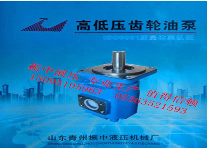 西藏高低壓齒輪油泵_山東專業高低壓齒輪油泵制造商