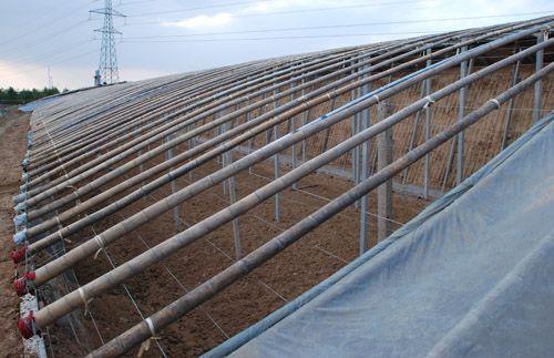 承建智能温室——哪里有提供结实耐用的寿光日光温室建造