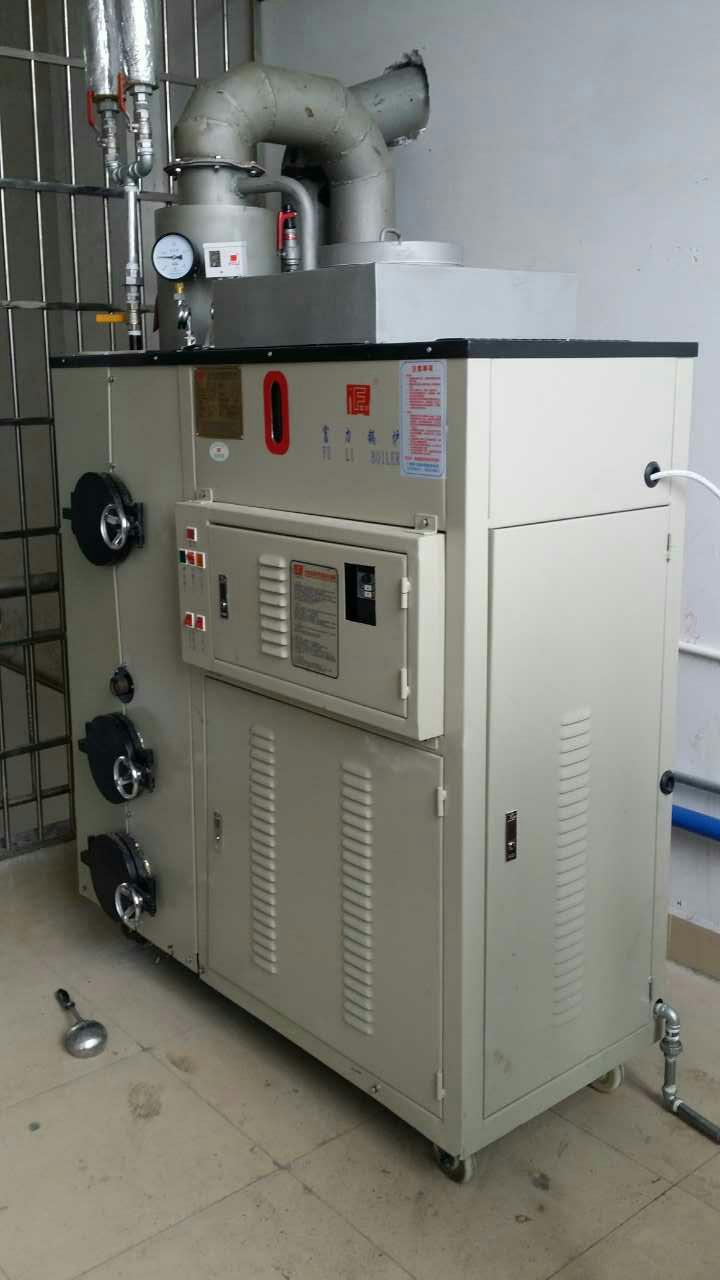 生物质发生器 免检生物质蒸汽发生器 B级发生器