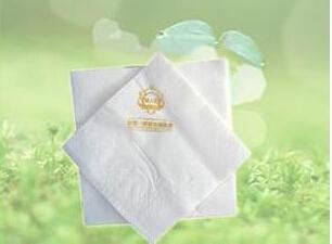 河南口碑好的印标餐巾纸推荐