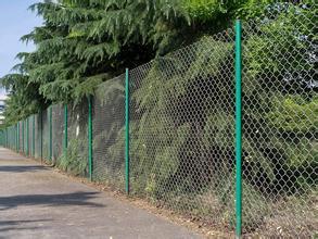 双边丝浸塑护栏网 圈地护栏网 铁丝防护隔离网 养殖用铁丝网