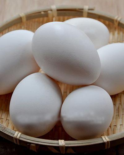 出售优质白鹅蛋