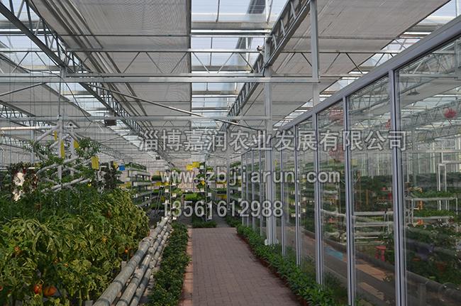 山东智能温室建设价格