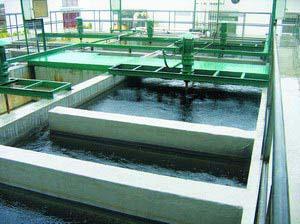 电镀铬清洗废水处理与铬废水回收铬-东莞市骊江环保科技有限公司