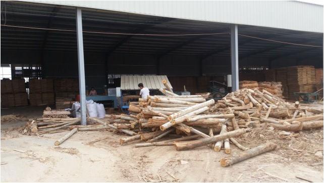 厂家直销的福建方木 口碑好的建筑方木供应商