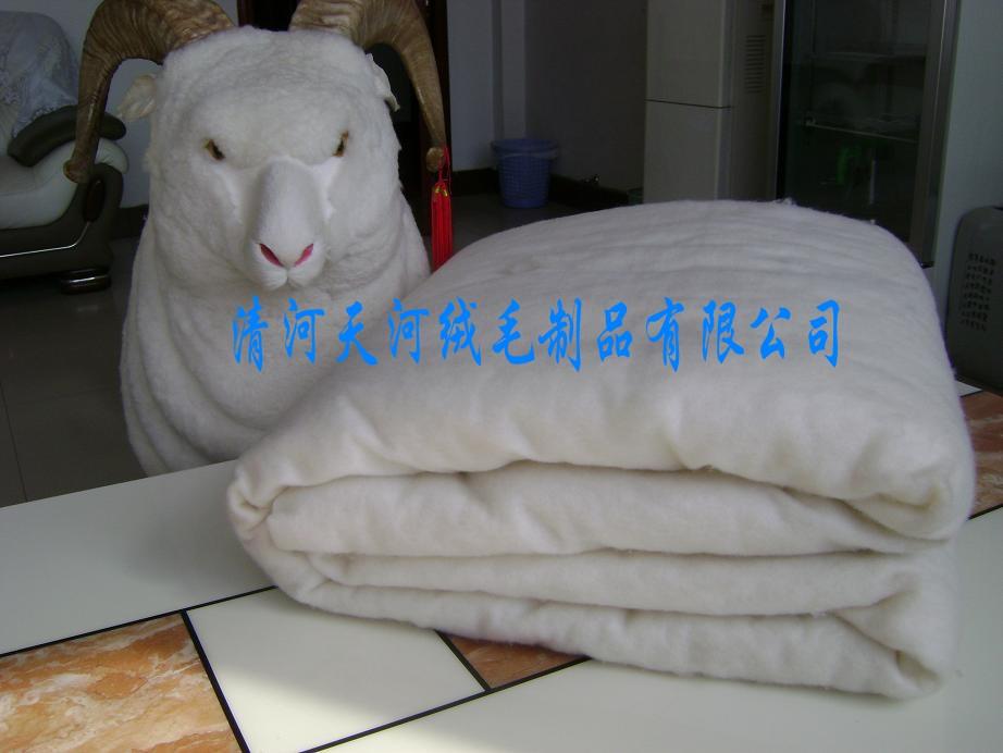 五一特价羊绒絮片