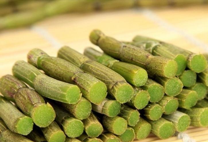 豐潤萊生物科技出售優惠的鐵皮石斛鮮條——崇文新鮮鐵皮石斛