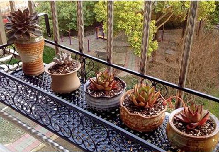 欧式阳台栏杆花架 悬挂铁艺种菜架 护栏多层花盆架