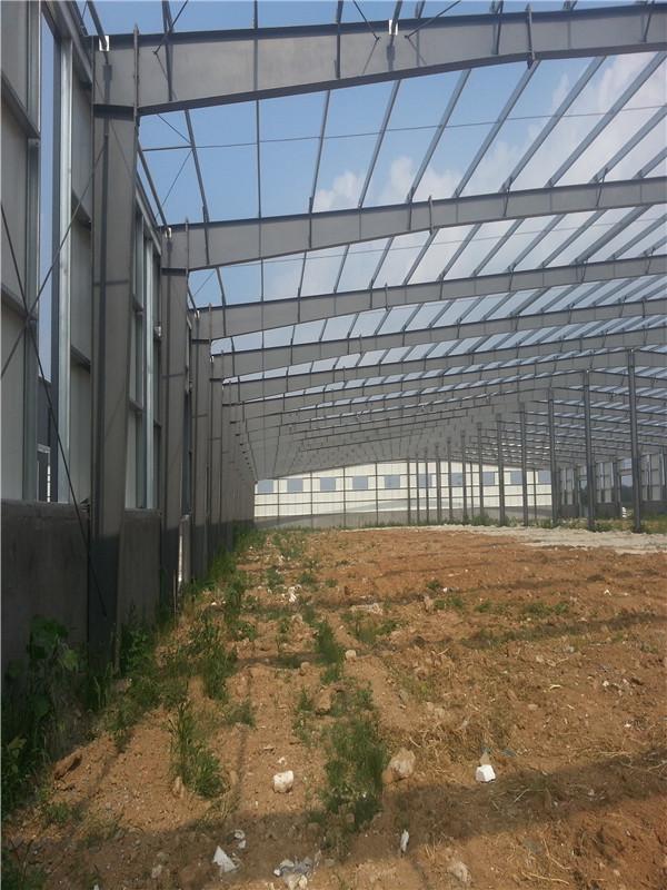 花卉温室工程-信誉好的山东温室工程建造上哪找