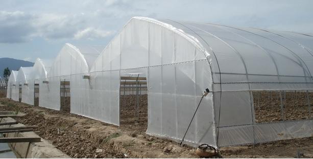 塑料温室大棚安装厂家,广西温室大棚