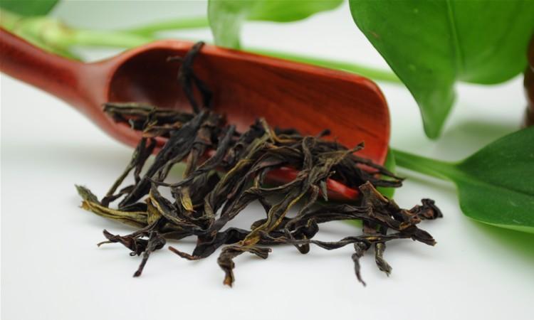 八仙单丛茶
