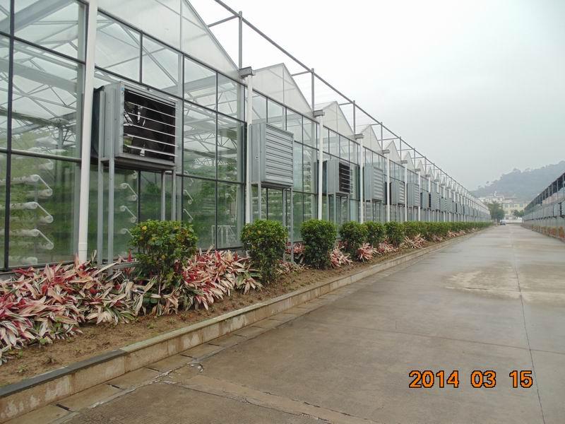 出口温室大棚加工公司