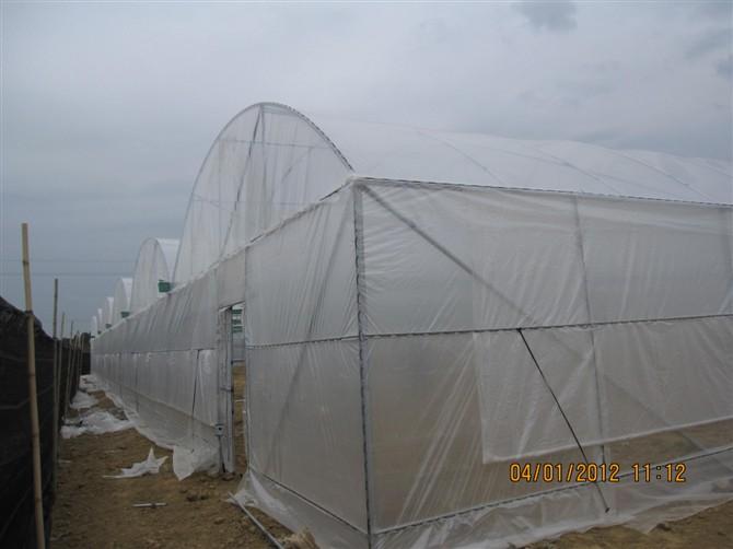 南宁水帘风机降温系统大棚降温设备