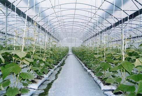 静电喷塑价格-亿美捷金属制品专业承建温室大棚