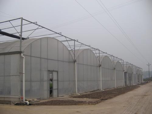 柳州温室大棚工程-上哪找可靠的南宁大棚安装服务