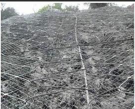 重慶蜘蛛網-衡水提供質量好的蜘蛛網
