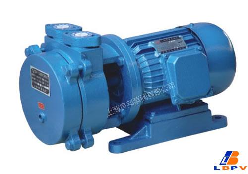SK直联式真空泵-良邦