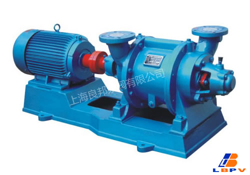 SZ水环式真空泵-良邦