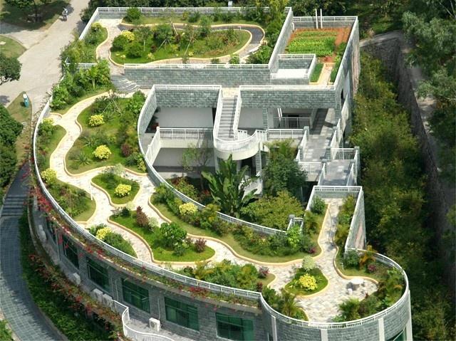 屋顶绿化专家
