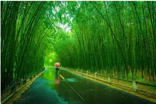 郑州到重渡沟旅游