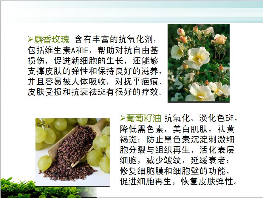 哪里有受歡迎的祛斑精油加盟,上海精油香水